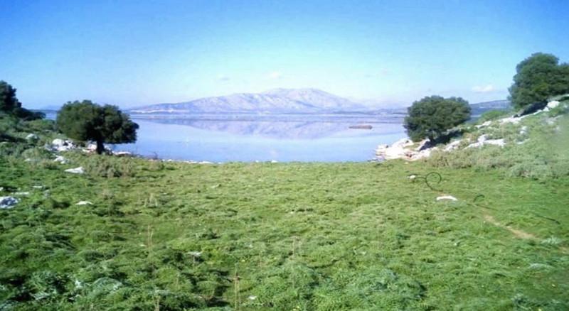 Остров Дулихий — 40 миллионов евро (44,1 миллиона долларов) греция, остров, продажа, цена, экономика