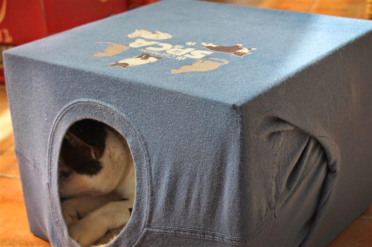 Домик для котенка своими руками из коробки и футболки