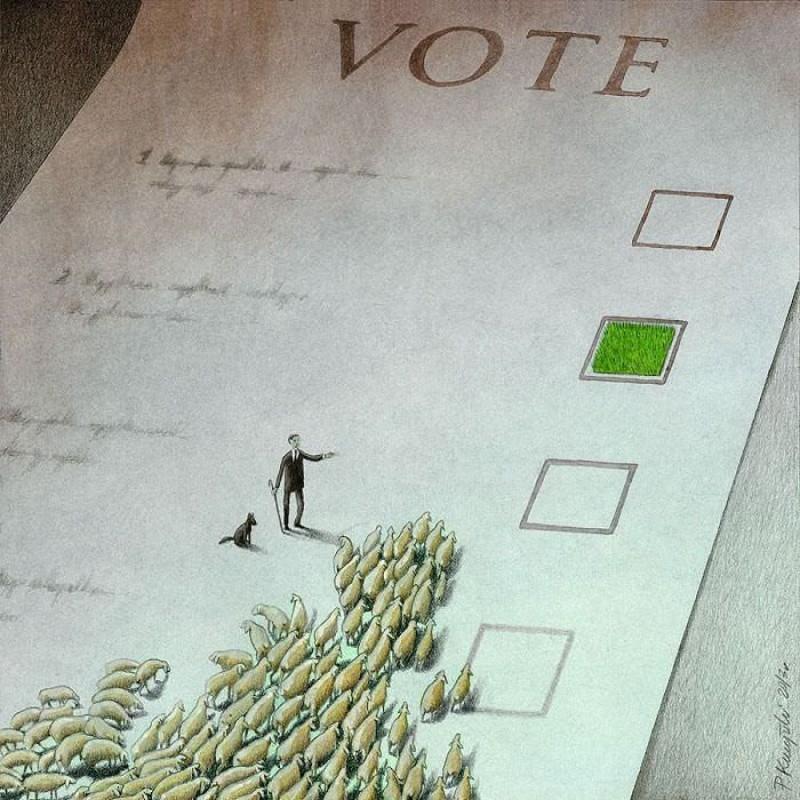 Выборы. жизнь, карикатура, художник